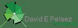 David E. Pelaez